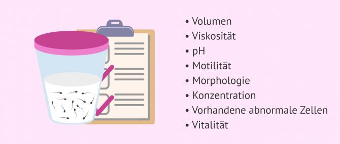 Imagen: Auswertung verschiedener Merkmale des Spermas