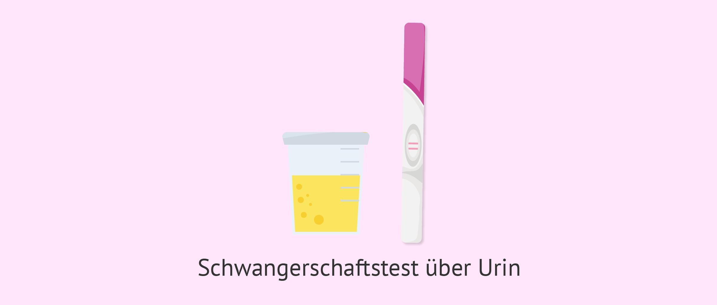 Schwangerschaftstest über Urin