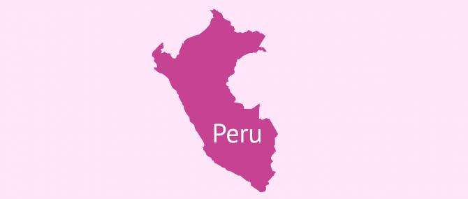 Leihmutterschaft in Peru: Rechtslage und Präzedenzfälle