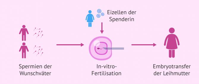 Imagen: Biologische Eltern werden bei homosexuellen Pärchen