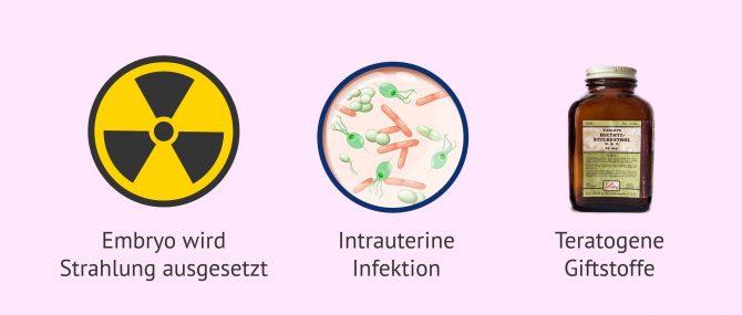 Imagen: Mögliche Ursachen von Gebärmutterfehlbildungen