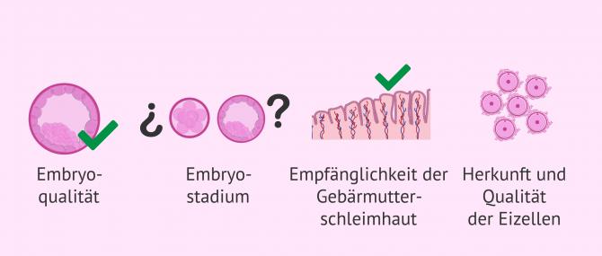 Imagen: Wie legt man die Anzahl der Embryos fest?
