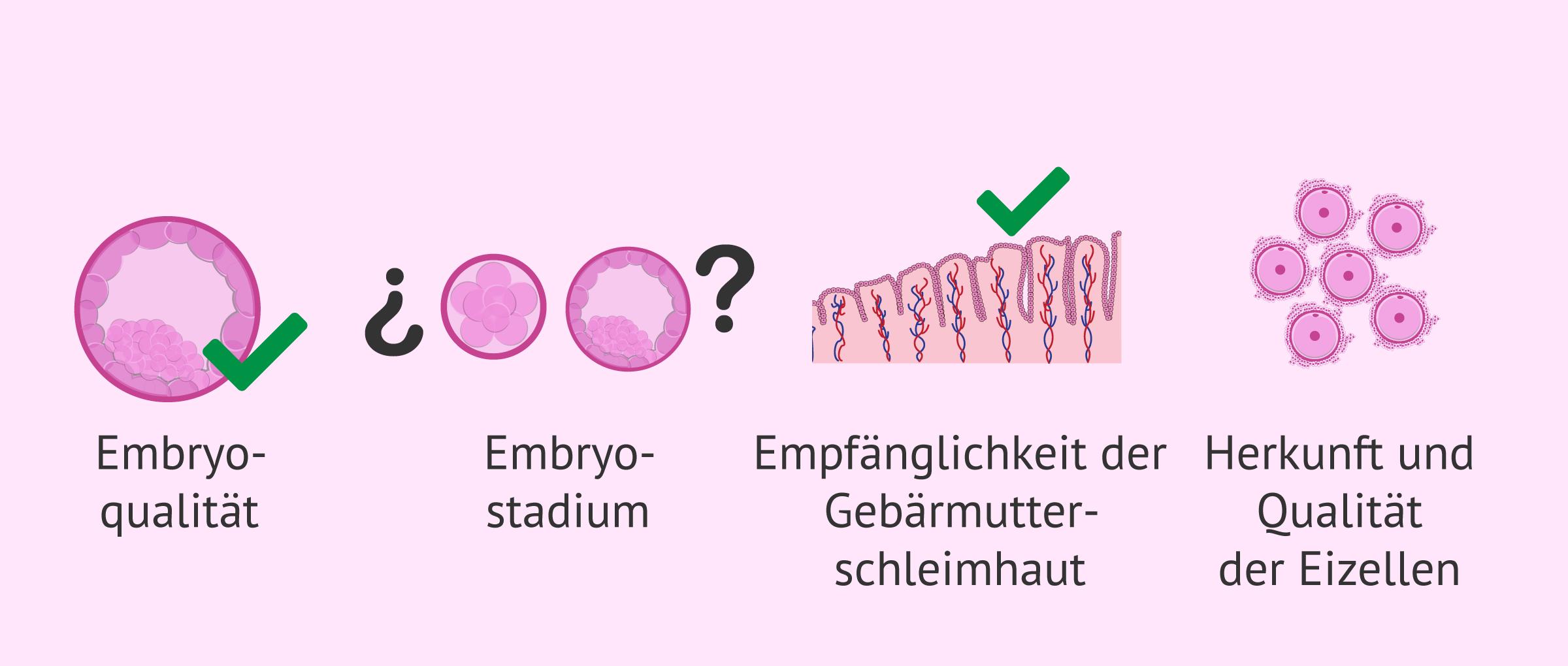 Wie legt man die Anzahl der Embryos fest?