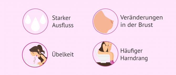 Imagen: Symptome nach Embryotransfer