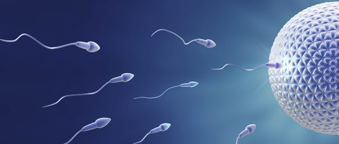 Egg and Sperm Donation in Assisted Reproduction