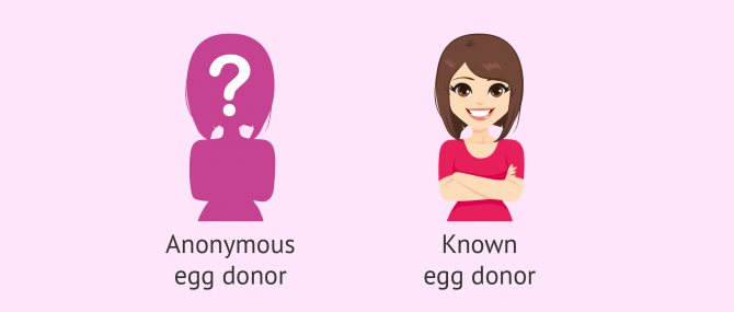 Egg donation in Russia