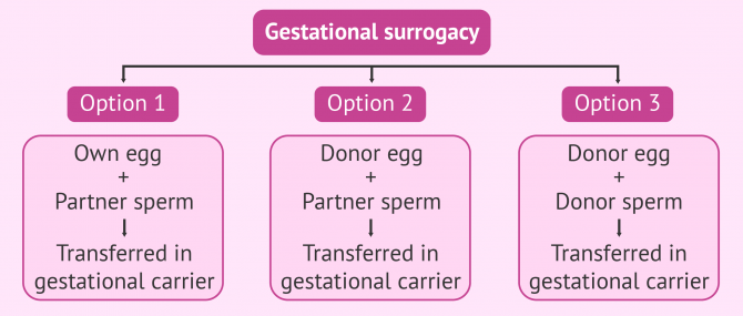 Possible combinations in gestational surrogacy