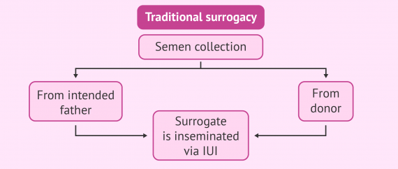 Possible combinations with traditional surrogacy