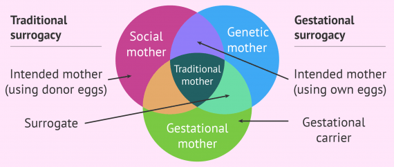 Surrogacy types and the redefinition of motherhood