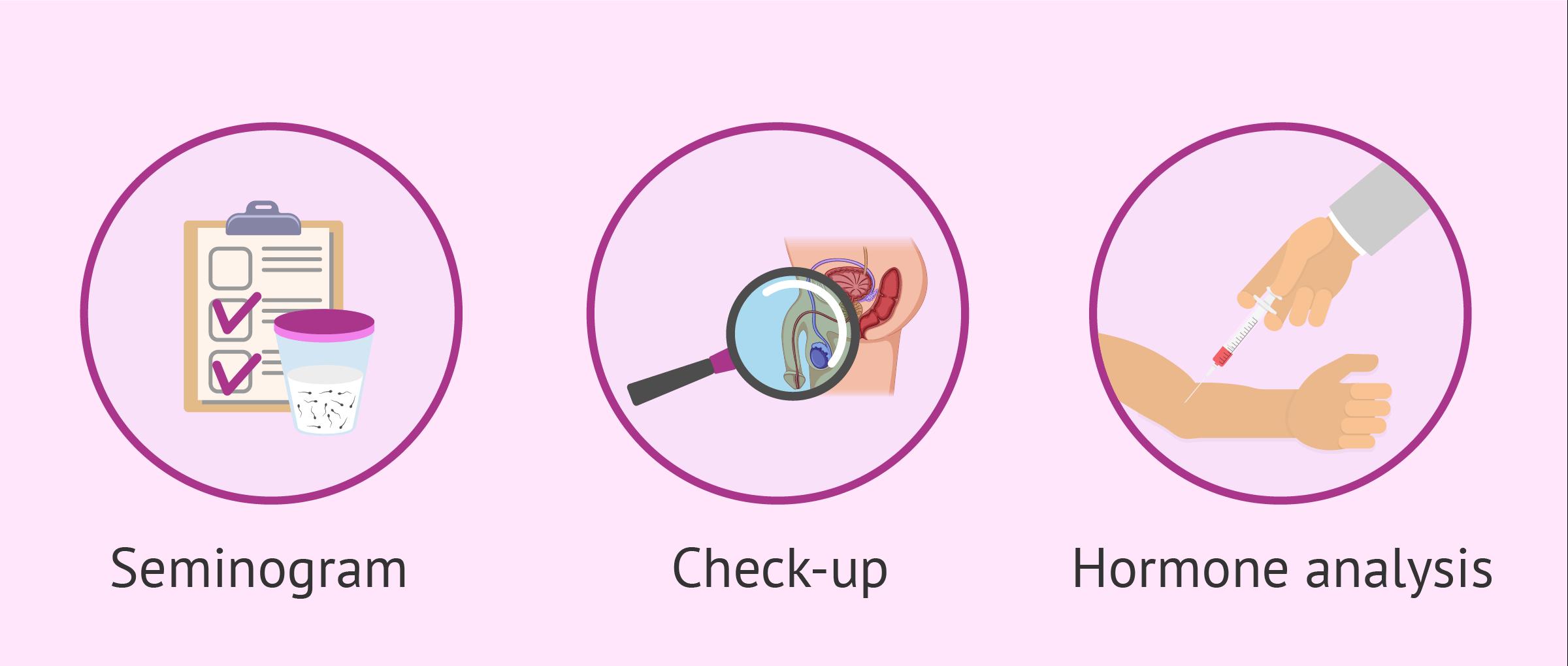 male infertility test copie
