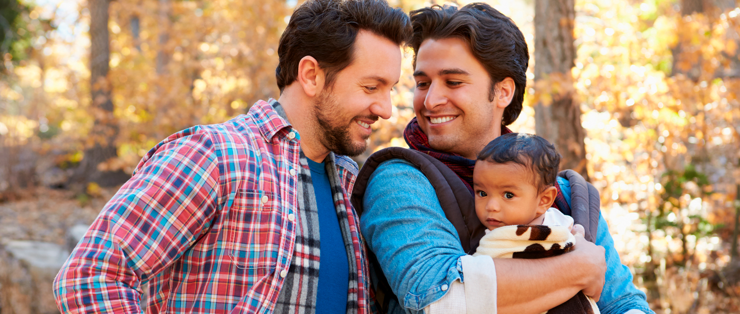 Adoption by Gay Couples