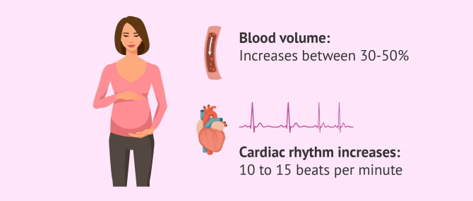 Imagen: cardiovascular changes and pregnancy