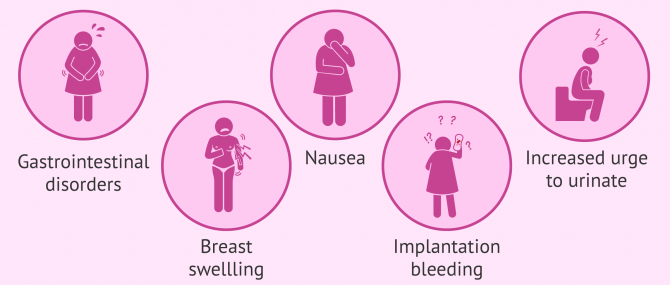 Imagen: Main symptoms of embryo implantation
