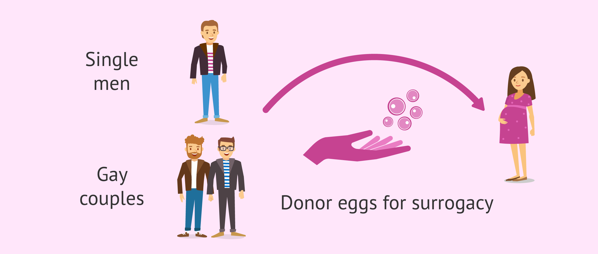 Egg donation for homosexual couples