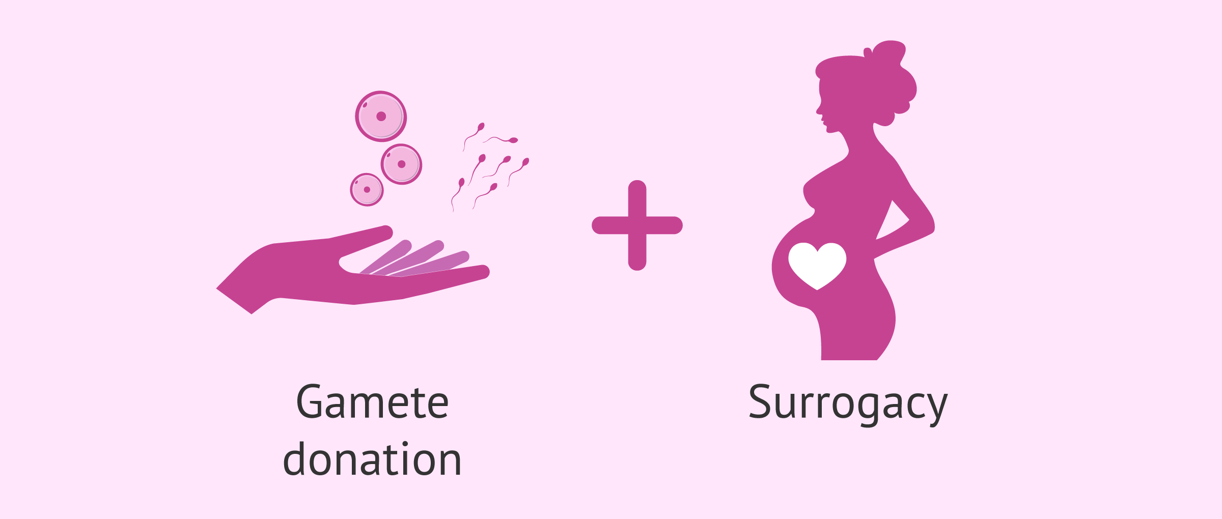 Gamete donation and surrogacy