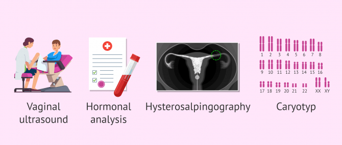 Imagen: Tests for evaluating a woman's reproductive status