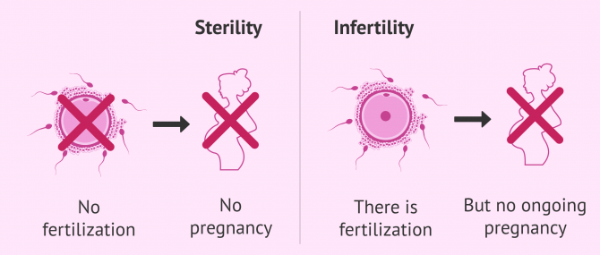 Imagen: Differences between sterility and infertility