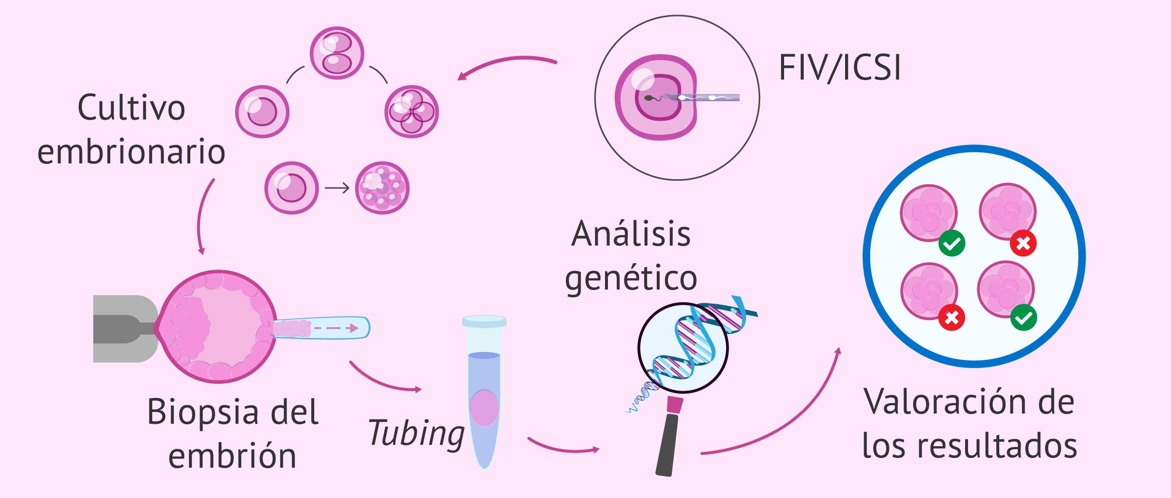 ¿Qué es el diagnóstico genético preimplantacional (DGP)?