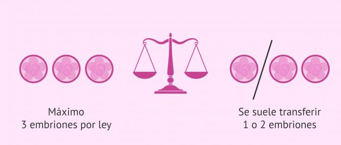 Imagen: ¿Cuántos embriones se transfieren por ley?