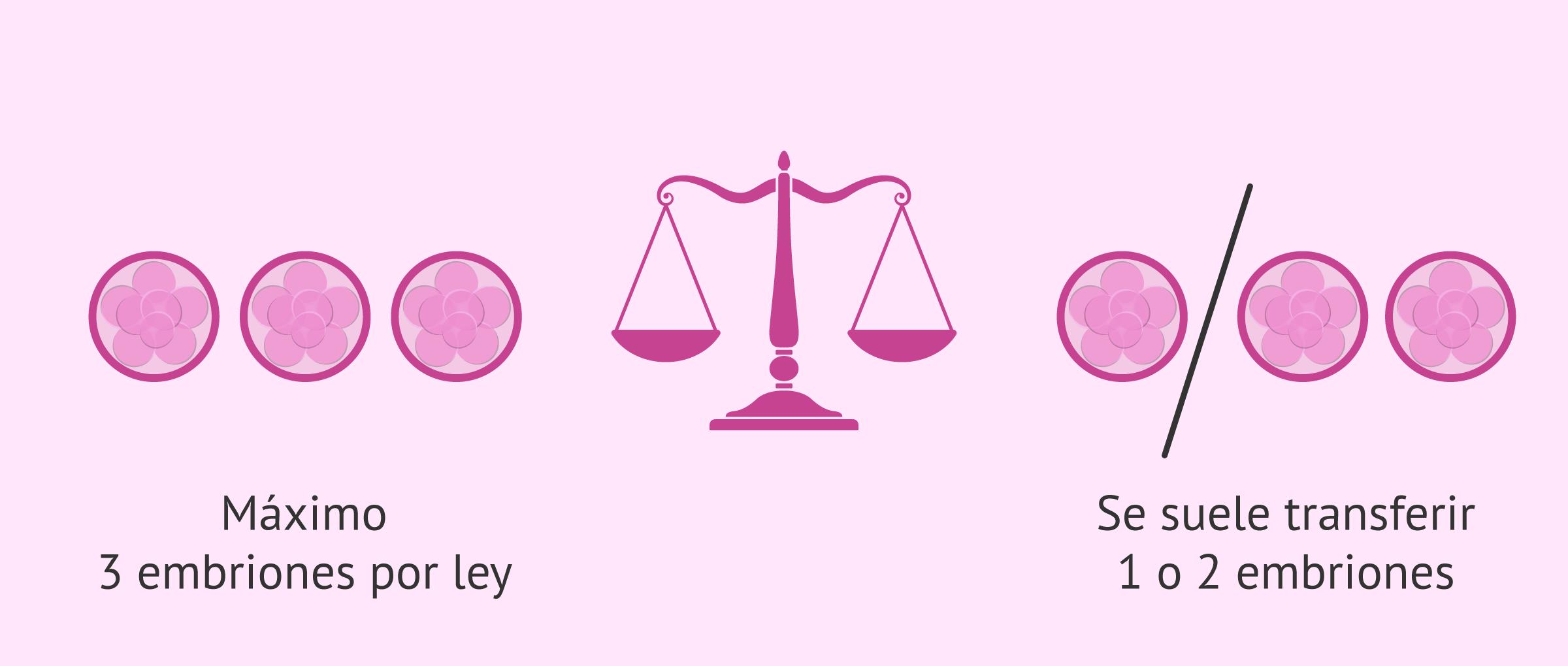 ¿Cuántos embriones se transfieren por ley?