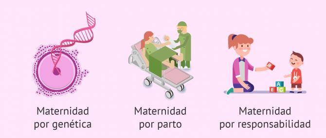 Tipos de maternidad