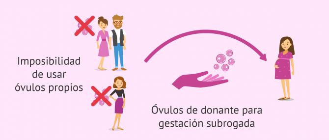 Si la mujer no puede aportar los óvulos se pueden utilizar los de una donante
