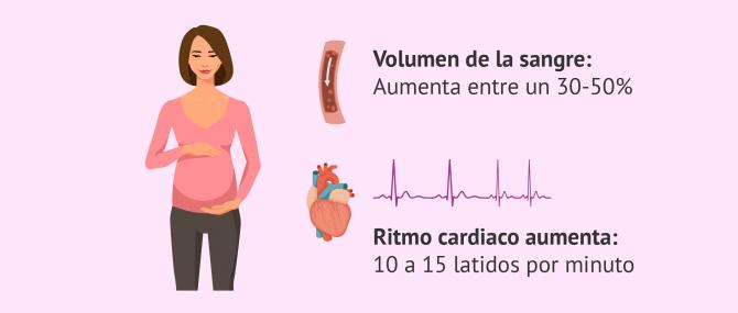 Cambios en el sistema cardiovascular por el embarazo