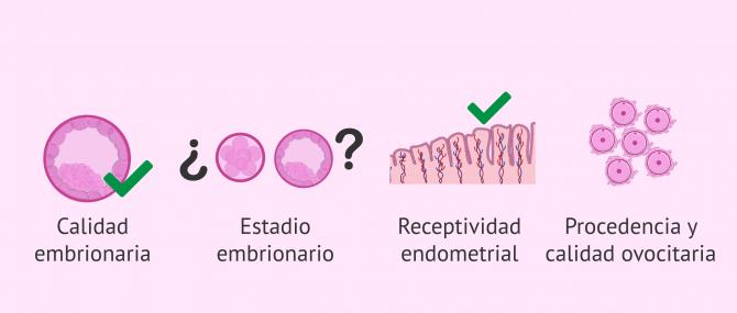 Imagen: ¿Cómo decidir el número de embriones?
