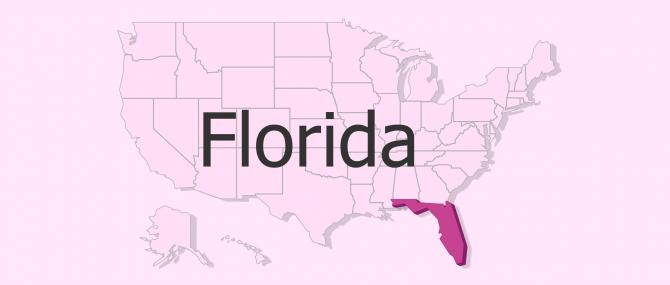 Gestación subrogada en Florida