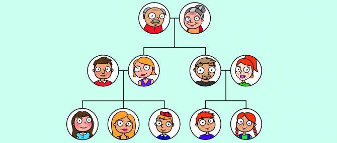 ¿Qué lugar ocupa la gestante en el árbol genealógico?