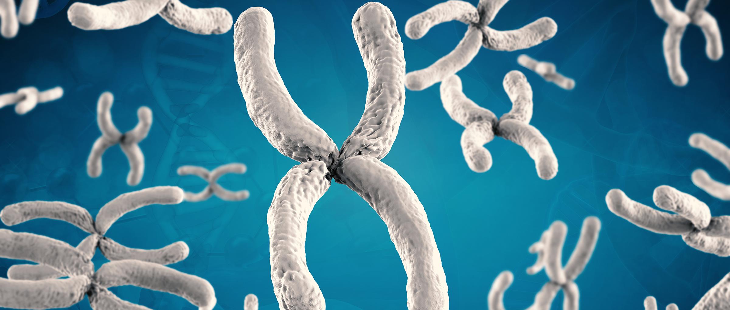 ¿Qué es el screening cromosómico completo (CCS)?