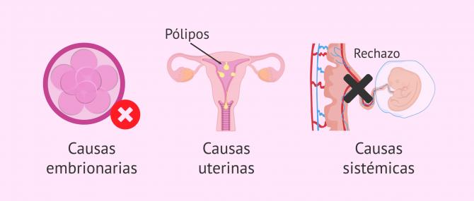 Imagen: ¿Por qué se producen los fallos de implantación embrionaria?