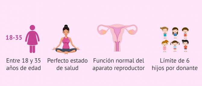Imagen: Requisitos para las donantes de óvulos