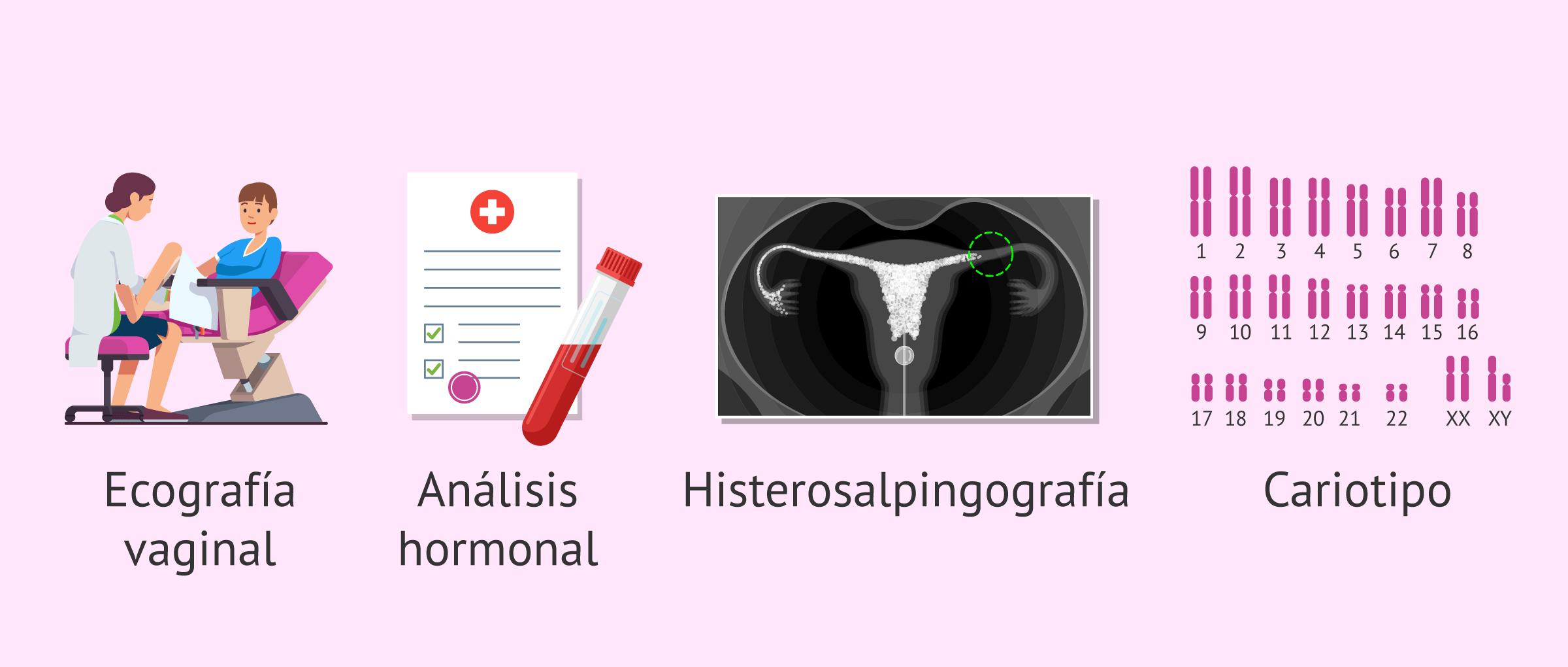 ¿Cuáles son las pruebas de fertilidad en la mujer y en qué consisten?