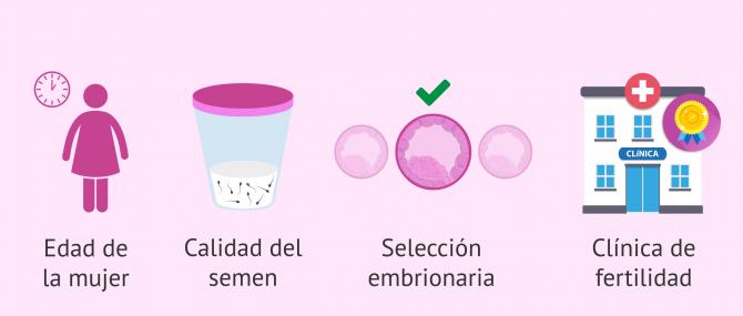 Imagen: ¿Qué factores predicen el éxito de la FIV?