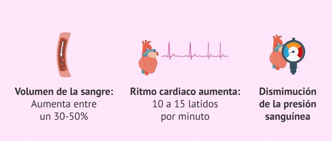 Imagen: Cambios a tener en cuenta en enfermedades cardiovasculares