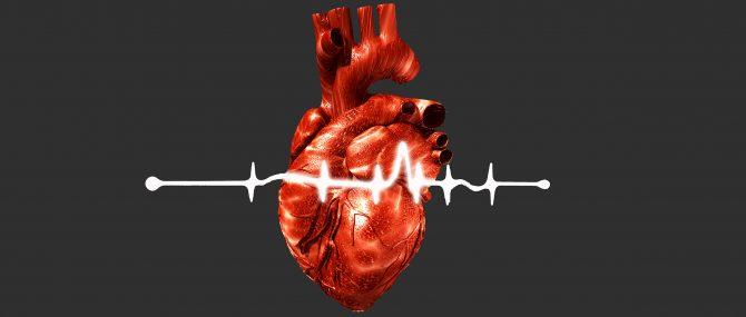 Imagen: Adaptation du coeur et des vaisseau à la grossesse