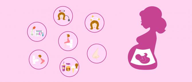 Changements physiques et hormonaux causés par la grossesse