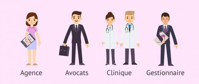 Professionnels de la GPA: agences, cliniques et avocats spécialisés