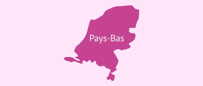 GPA aux Pays-Bas: conditions et transfert de la parentalité