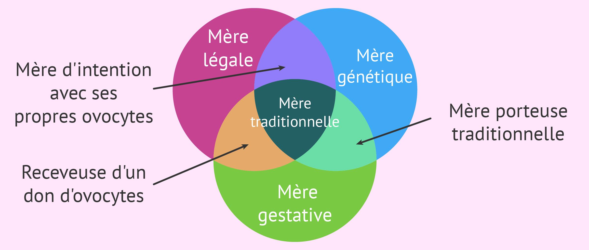 Fragmentation du concept de mère traditionnelle